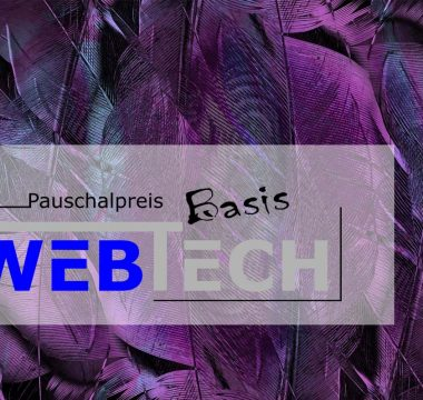 Pauschalangebot Website Basis